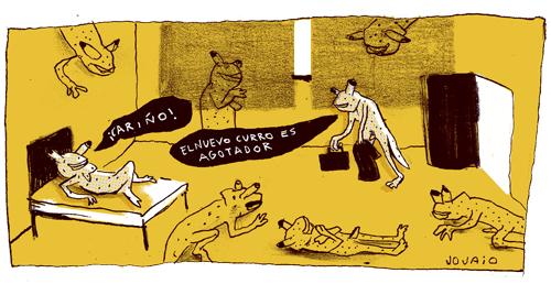 jojaio - camaleones - camuflaje 1