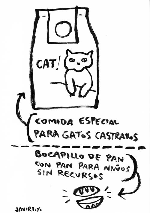 javirroyo_comida-especial-para-gatos