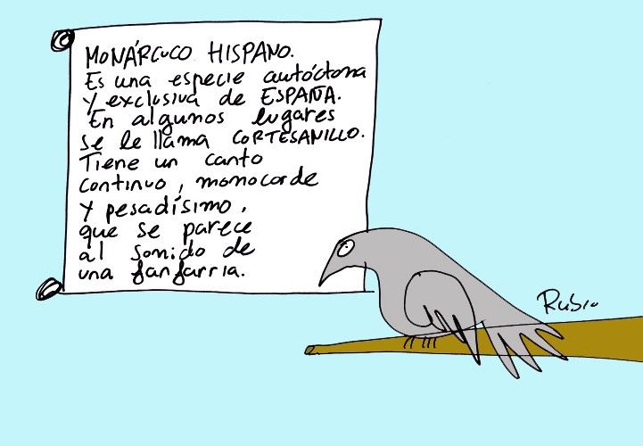 RubioEstafadorMonarquia