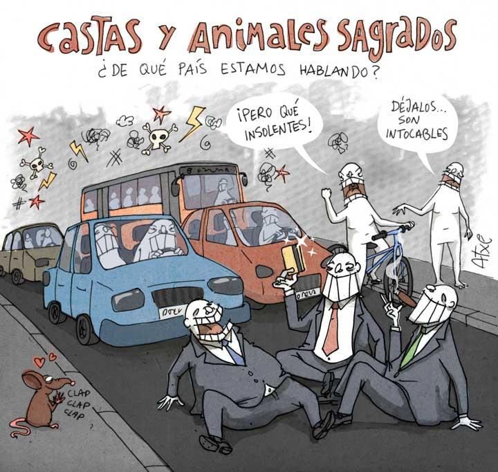 Castas y animales sagrados